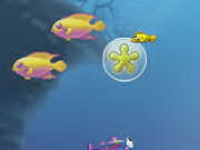Growing fish game 2 play online for Grow fish game