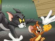 Tom And Jerry Chase In Marsh Game