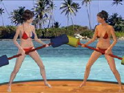 Beach Catfight Game